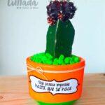 cactus-coreano