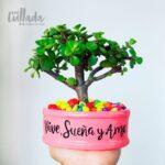 Mini maceta rosa piedras colores